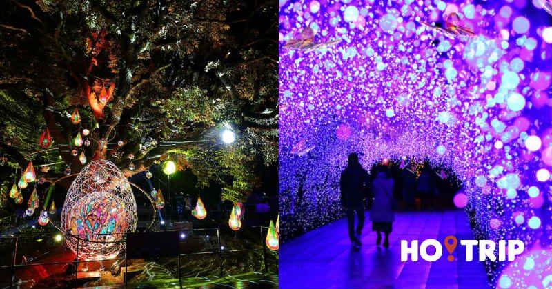 日本江之島聖誕燈飾超浪漫!7萬顆Swarovski水晶打造極夢幻粉色隧道~